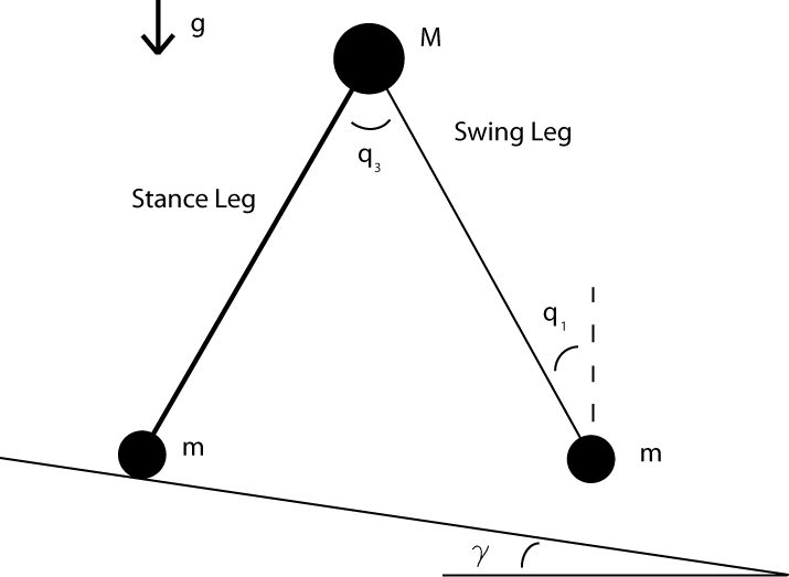 Dynamic Walking MATLAB Simulation Guide